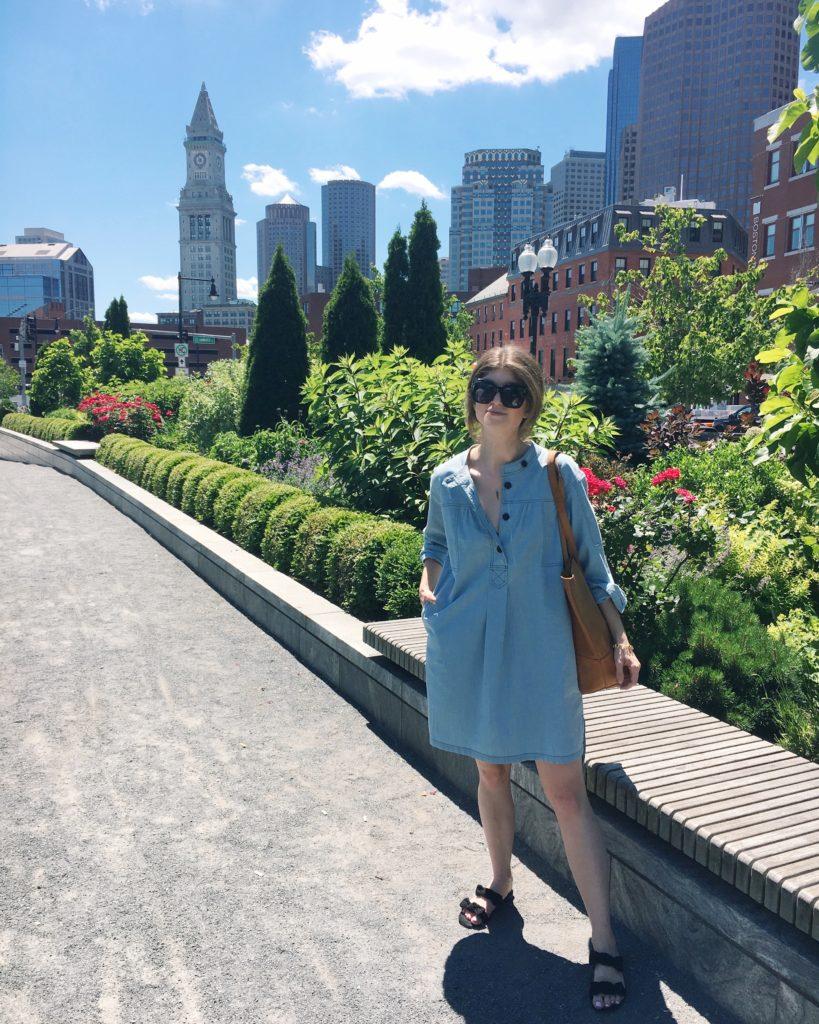 ulla Johnson dress, north end Boston